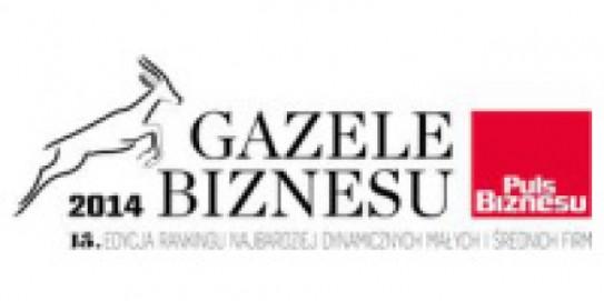 Gazele Biznesu 2014